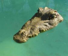 35cm Floating Crocodile Head Garden Ornament Pool Pond Animal Sculpture Figurine
