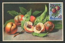 SAN MARINO MK 1958 FLORA FRÜCHTE PFIRSICHE FRUITS FRUIT MAXIMUM CARD MC CM d8106