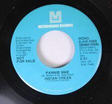 Rock Promo NM! 45 Indian Creek Fannie Mae / Fannie Mae on Metromedia