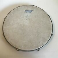 Rare Vintage Ludwig Weather Master db-750 Tambourine Drum Head 12""