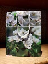 Geschenktüte -tasche -blüten Motiv 23 X18 X 8 Cm