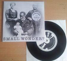 "The Carpettes - Small Wonder? / 2Ne1 (Limited Edition 116/464) 7"""
