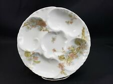 Haviland & Co. Limoges Tyndale & Mitchell Co. Pink Blue Floral Oyster Plate