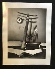 Jaroslav Rössler, abstrakte Komposition mit Blume, 1961, Pfotographie, 2009