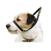 Dog Harness Collar Lead Adjustable Padded Resistant Non Pull Vest Puppy EasyWalk