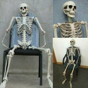 Large Poseable Full Life Size Human Skeleton Prop Halloween Party Decoration