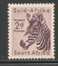 South Africa #203 (A101) VF MNH - 1954 2p Zebra