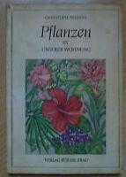 Pflanzen in unserer Wohnung