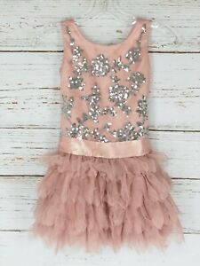 Biscotti Collection Girls Dress Sz 6 Pink Silver Sequins Tulle Trim Sleeveless