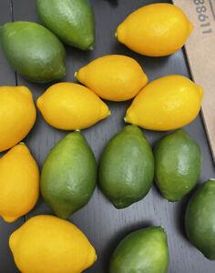 7 Limes 7 Lemons Decorative Faux Fruit Realistic Handcrafted Staging Props Vint.