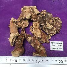 LOTE Nº 257 Mandrake Root Wiccan Spells, Ritual! 90gr Raiz de Mandragora