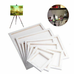 1X BLANK ARTIST CANVAS WHITE STRETCHED MINI FRAMED Large ART CRAFT
