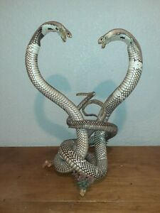 white cobras fighting taxidermy mounted 21 in tall super rare