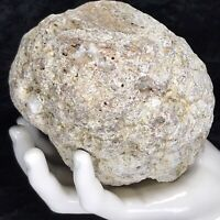 "5"" Large Geode Crystal Rattler Unopened Quartz Break Your Own Kentucky 2.12Lb"