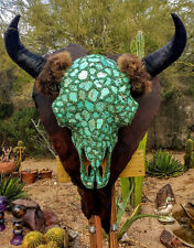 Turquoise Buffalo, record class Bison skull on Redwood Burl panel, Joni Hamari