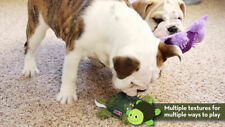Kong Shells Textured Dog Toy - Turtle Free Shipping