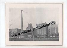 Malzfeldt Mühlen Sarstedt Hannover Hildesheim Carlshafen 6 Seiten Bericht 1924