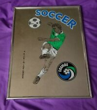 New York Cosmos Pele 1977 'A Kick in the Grass' Painted Mirror size 16 x 12 rare