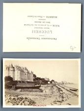 Lucchessi, France, Arcachon Panorama  CDV vintage albumen carte de visite,  Ti