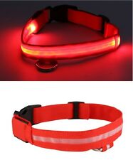RECHARGEABLE USB LED Dog Pet Light Up Safety Collar Night Glow Adjustable NEW