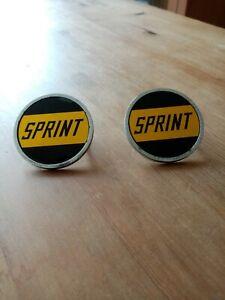 Triumph Dolomite Sprint Badges