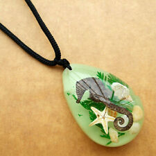 New Design Imitation Amber Resin Charm Pendant Chain Conch Starfish Necklace