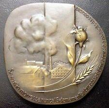 """Writer Portuguese Poet """"Cesário Verde"""" 1855-1886 Bronze Medal by Irene Vilar M88"""