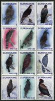 Suriname 2019 MNH Eagles Eagle 12v Block Birds of Prey Stamps