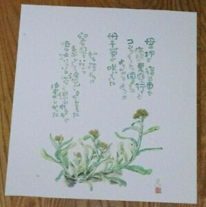 STONECROP ii BY TOMIHIRO HOSHINO - Art Print of a Japanese Flower Painting