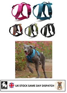 Truelove Tactical Step in Safety Dog Puppy Harness Anti Pulling Choke Free Vest