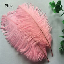 10pcs Pink ostrich feathers 6-8 inches / 15-20 cm DIY clothing accessories