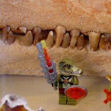 LEGO 70231 CHIMA CROCODILE TRIBE PACK CROCODILE FIGURE ONLY NEW LOOSE#40050A&51A