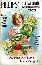 Botanical Philips flower seeds Kitchen wall hangings Poster print 1903 A4