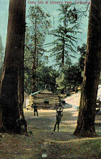 Mt.Wilson,California,Camp Life at Wilson's Peak,San Gabriel Mountains.,c1909