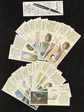 Birds Collectable Tea Cards