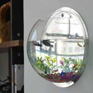 Pot Plant Wall Mounted Newest Hanging Decor Bubble Bowl Flowers Fish Tank