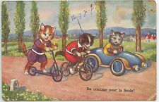CARTE POSTALE / POSTCARD  CHAT / CAT /  DU COURAGE POUR LA FINALE