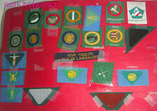 21 BREVETS  SCOUTS DIFFERENTS