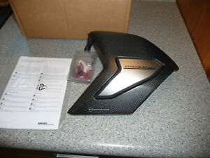 Ducati Panigale V4 Carbon Swingarm Guard cover new 96989991A