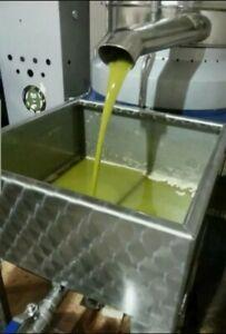 Olio extravergine di oliva  5 litri biologico siciliano nuova molitura  2020