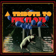 Tribute To Pink Floyd - 2 DISC SET - Various Artist (CD New) Explicit Version