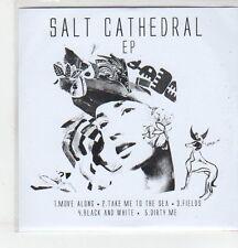 (ER951) Salt Cathedral, Move Along - 2013 DJ CD