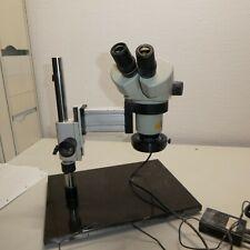 Carton DSZ 44 Stereo Auflicht Mikroskop, 2 x DSW10x23                    J