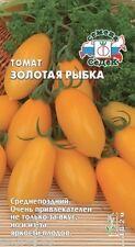 Seeds of Tomato gold fish 0,1 g Sedek Томат Помидор Золота� рыбка