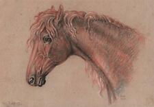 SUPERB OLD MASTER HORSE PORTRAIT STUDY Chalk Drawing 1815 WARD