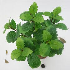 Feuilles d'érable vert artificielles feuilles de vignes feuilles en pot