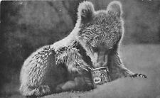 POSTCARD     BROWN  BEAR  CUB   Golden  Syrup