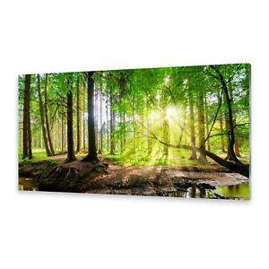 Glas-Bild Wandbilder Druck auf Glas 100x70 Deko Landschaften Fluss im Wald