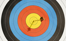 Official World Archery FITA 40cm Heavy Laminated Target Faces - Roll of 10 Sheet