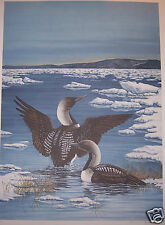 """Arctic Loon"" by Christine Marshall Limited Edition Lithograph #44/119"